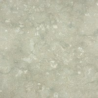 Shop Anatolia Tile 4-Pack Seagrass Honed Limestone Floor ...