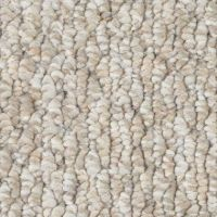 Shop Icedance Berber Indoor/Outdoor Carpet at Lowes.com