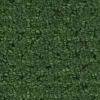 Shop Forest Green Berber Indoor/Outdoor Carpet at Lowes.com