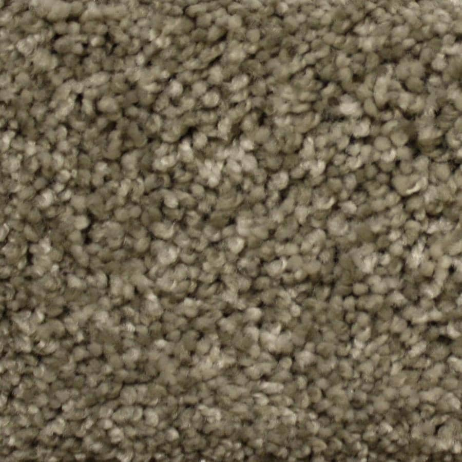 STAINMASTER PetProtect Georgetown 12ft Textured Interior