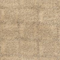 Lowes Stainmaster Pet Protect Carpet Reviews ...