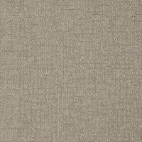 Shop STAINMASTER PetProtect Bitzy Hank Carpet Sample at