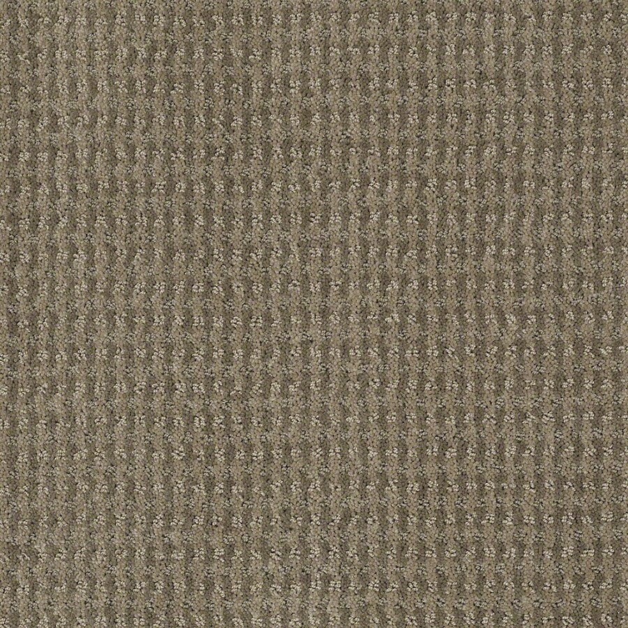 You have to consider the durability of the carpet. STAINMASTER Active Family St John Greige Carpet Sample at