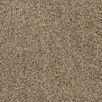 Shop STAINMASTER TruSoft Private Oasis II Niagara Carpet