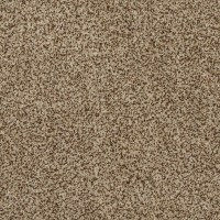Shop STAINMASTER TruSoft Private Oasis II Niagara Carpet ...
