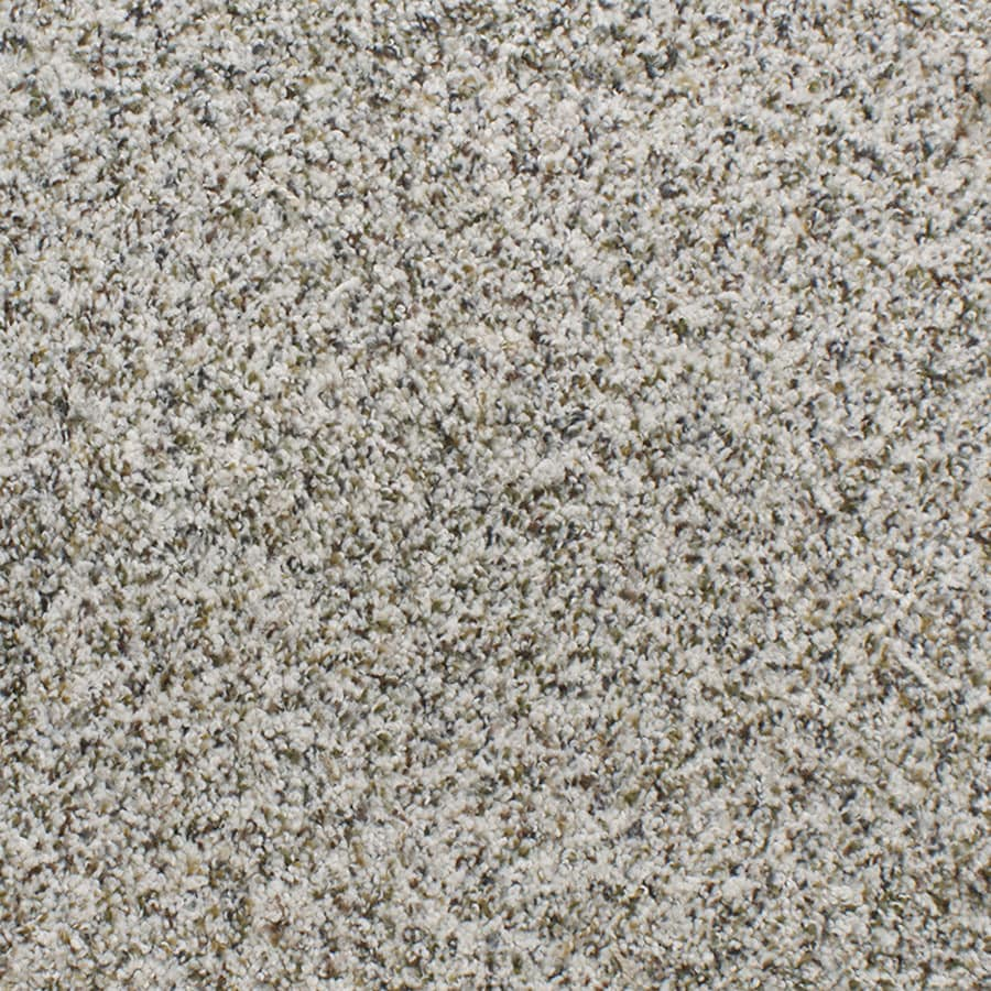 Shop STAINMASTER TruSoft Luminosity Sutton Carpet Sample