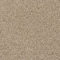 Shop STAINMASTER TruSoft Pleasant Point Zumba Carpet