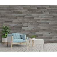 Shop Design Innovations Reclaimed Shiplap 10.5-sq ft ...