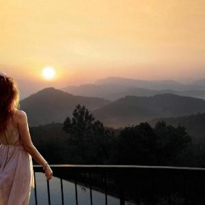 3 Star Hotels Thekkadi Deals At The 1 3 Star Hotels In