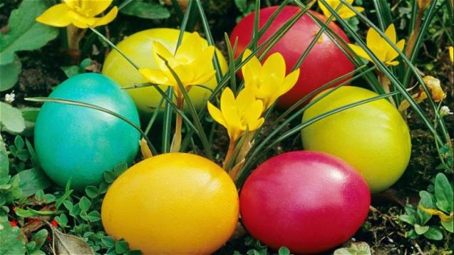 Lava Iris 458Q Color representation