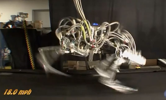 cheetahrobot DARPA's Cheetah Robot Is Fast, But Dangerous And Creepy (Video)