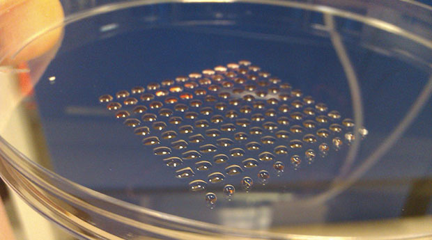 130205-stemcell Scientists Use 3D Printer to Manufacture Embryonic Stem Cells