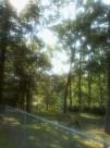 View ou of back door facing lake. Big yard that kids played in.