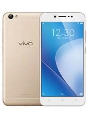 Photo of Vivo Y55s