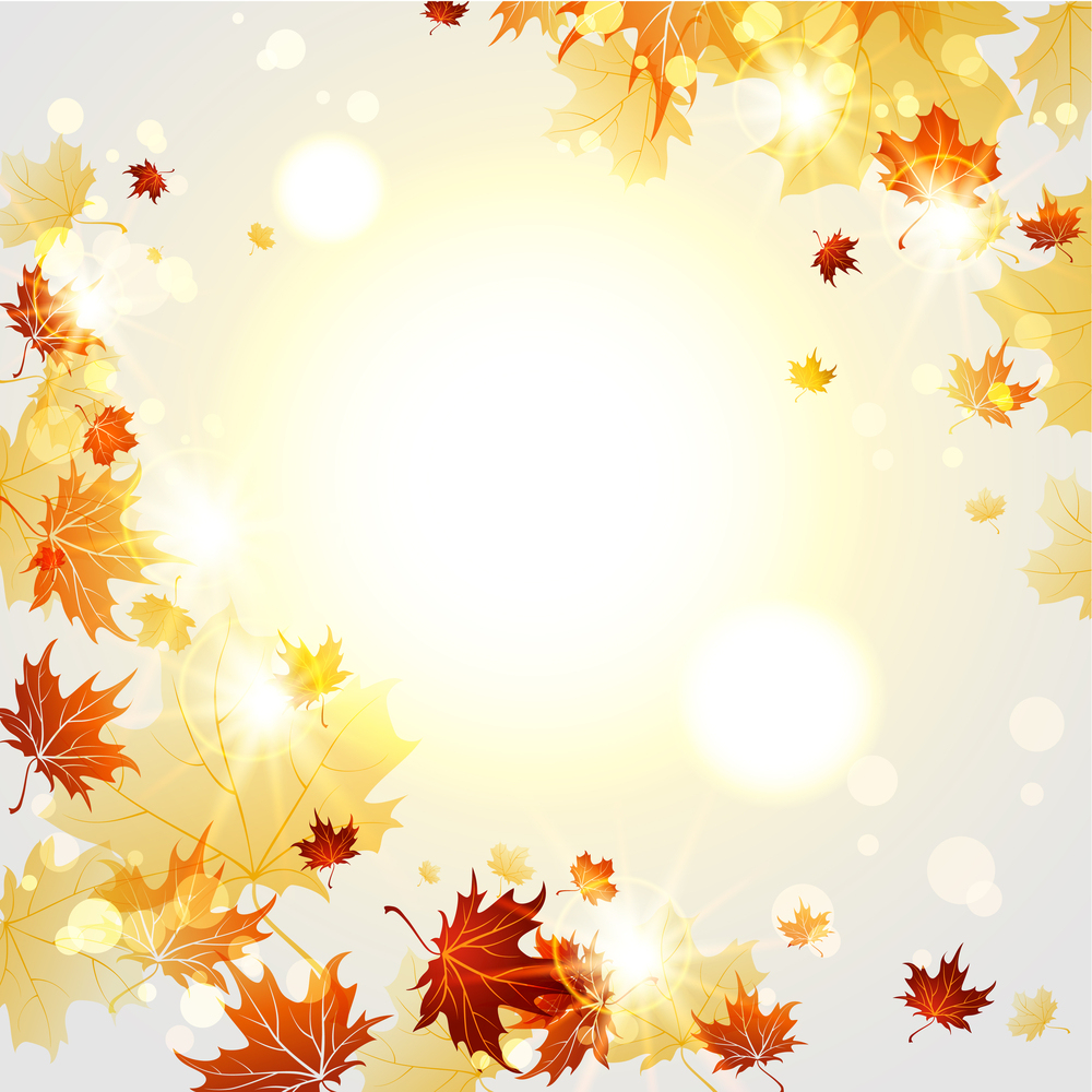 Fall Leaves Wallpaper Border Bigstock Bright Autumn Background Wit 50627447 Jpg