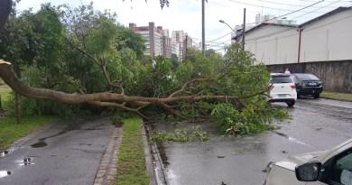 Avenida Dário Lopes dos Santos