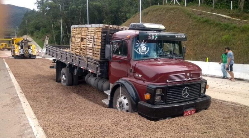 Caminhão Quinta
