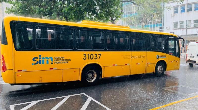 Ônibus executivos amarelinhos