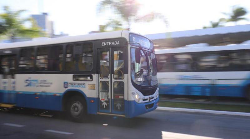 Ônibus Transporte Florianópolis