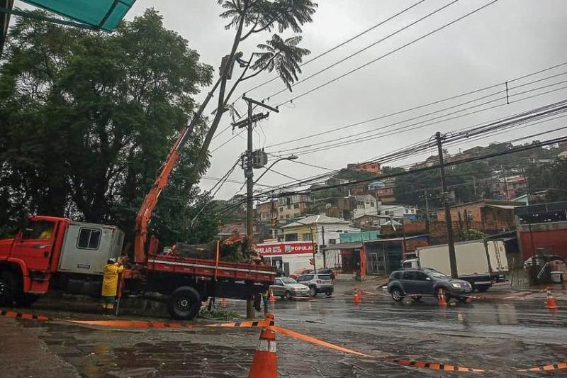 Chuva Forte Em Porto Alegre Causa Quedas De Arvores Acidentes Alagamentos E Apagao Em Semaforos