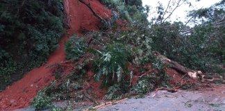 Rodovia Rio-Santos Queda de barreira e árvores