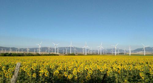 Ecolabel: il marchio UE certifica anche le strutture ricettive a basso impatto ambientale