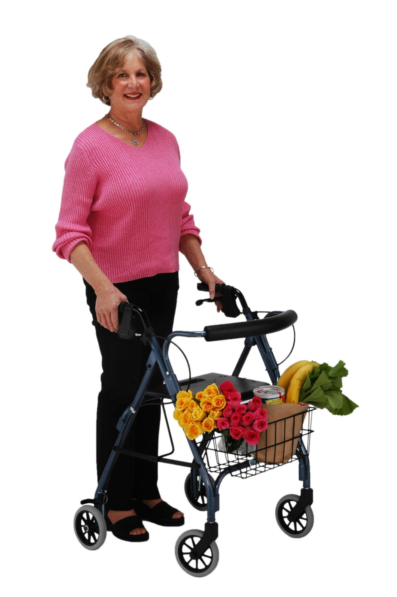 power lift chair repair plastic adirondack chairs access, mobility, & rental ctr - nova daily living aids 336.608.8810...we sell, deliver ...