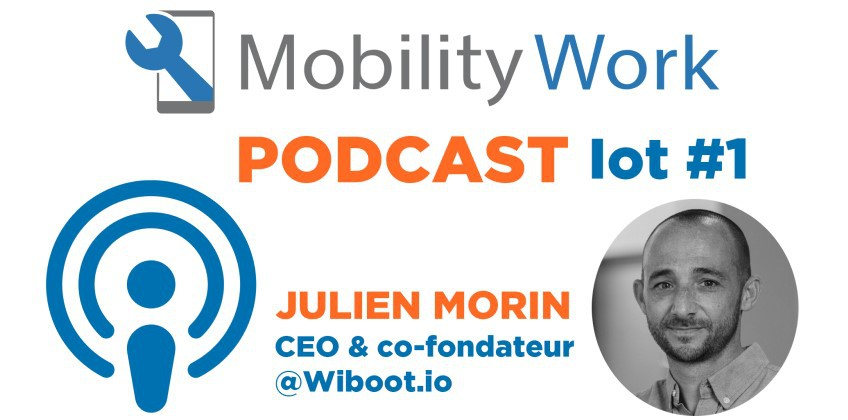 IoT Podcast #1: Current and future trends in IoT, with the CEO of Wiboot