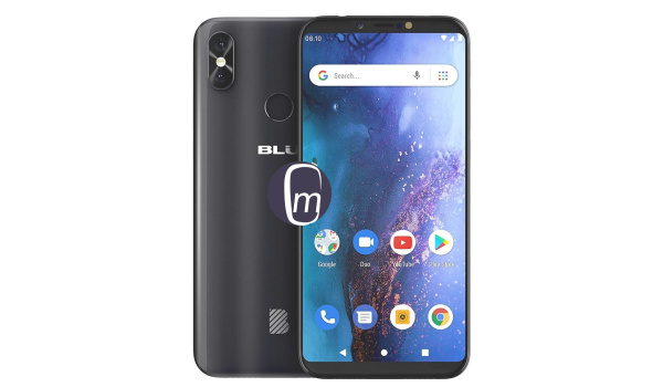 BLU Vivo Go with Android 9 Pie