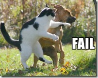 dogcatfail1