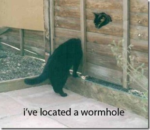 lolcats-wormhole
