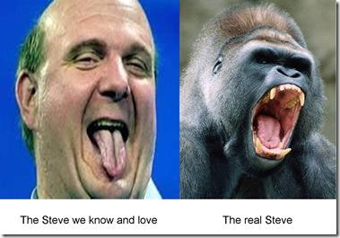 Gorilla-Steve