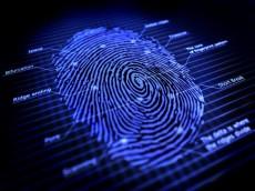 Fingerprint-large-Small