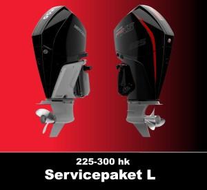 Serviceprotokoll Mercury 225-300 hk