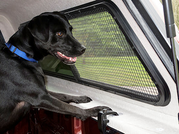 Pet Screen Protectors Mobile Living Truck And Suv