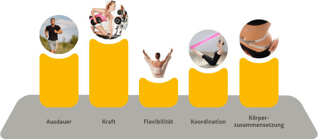 koordination-training