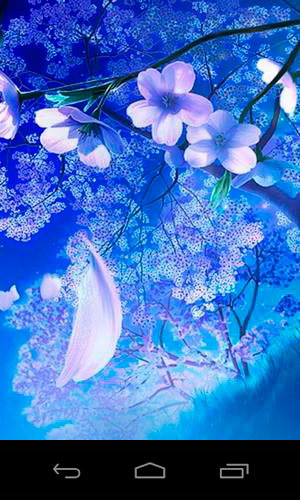Touch Screen Animated Wallpapers 3d Sakura Magic Pour Android 224 T 233 L 233 Charger Gratuitement