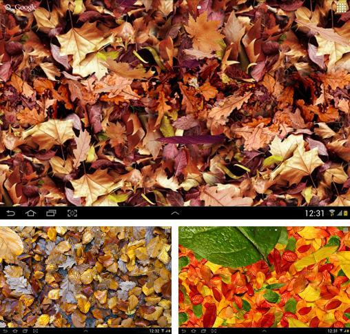 Falling Snow Live Wallpaper Apk Descargar Birds By Happy Live Wallpapers Para Android