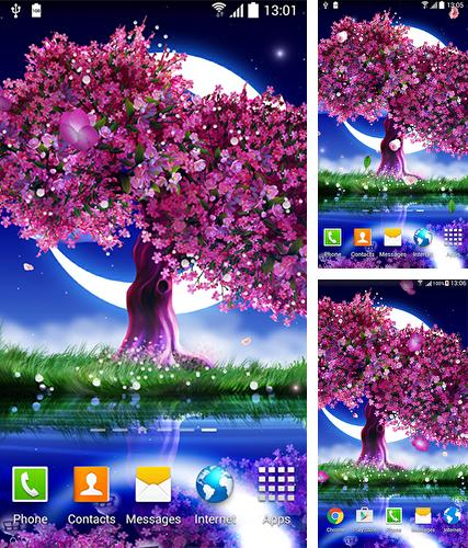 Sakura Falling Live Wallpaper Apk Full Android Plants Live Wallpapers Free Download Page 4