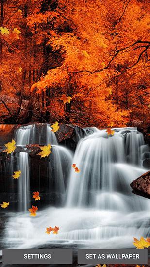 Falling Leaves Live Wallpaper Apk Falling Leaves F 252 R Android Kostenlos Herunterladen Live