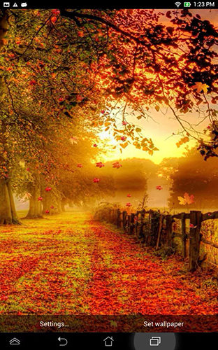 Falling Leaves Live Wallpaper Android Download Falling Leaves By Top Live Wallpapers Live Wallpaper For
