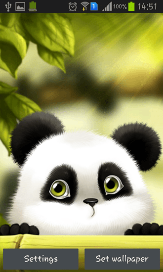 Cute Girly Live Wallpapers For Android Panda Para Android Baixar Gr 225 Tis O Papel De Parede