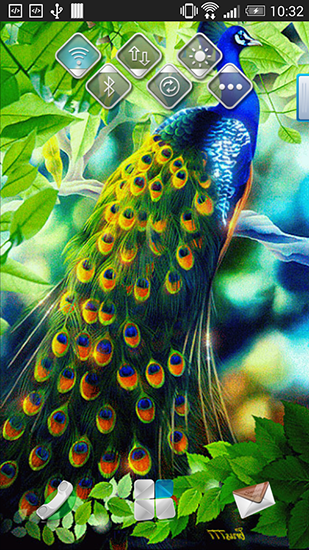 Beautiful Girl Live Wallpaper For Android Peacock Live Wallpaper For Android Peacock Free Download