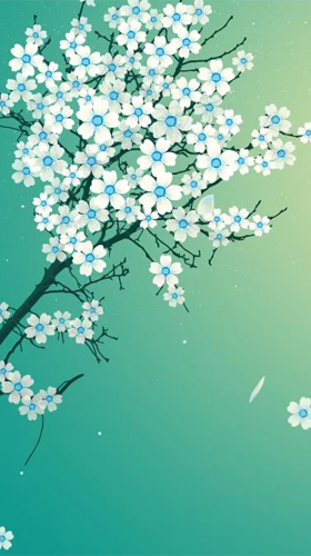 Sakura Falling Live Wallpaper Apk Sakura By Xllusion Live Wallpaper For Android Sakura By