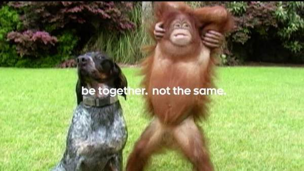 """be together. not the same."" – nowe reklamy Androida"