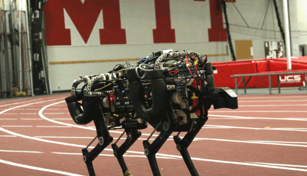 Robot Cheetah niczym koń terminator