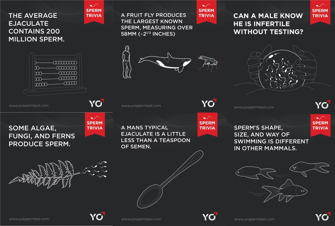 Sperm Trivia - przykłady kampanii prowadzonych na temat płodności mężczyzna w social mediach
