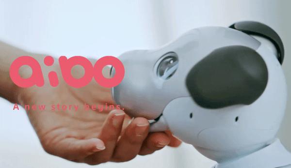 Sony zapowiedziało nowego roboto-psa Aibo