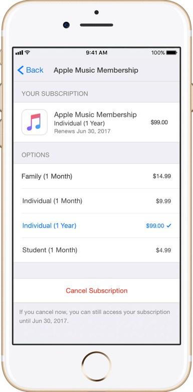 Wybór subskrypcji w Apple Music (1 rok)