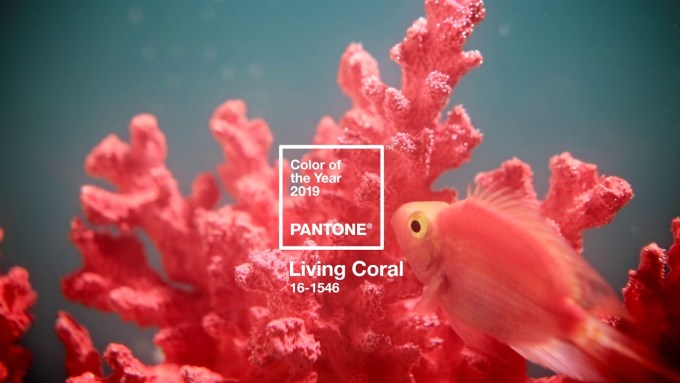 Kolor 2019 roku: PANTONE 16-1546 Living Coral